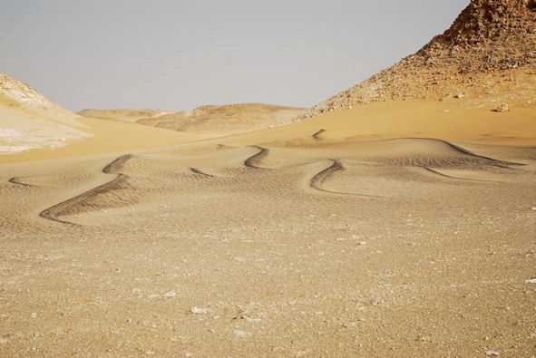 Deserts | Our Egypt